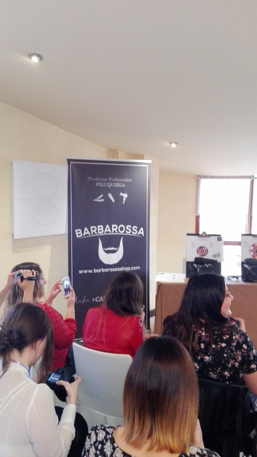 Barbarossa panel